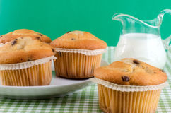 Fresh muffins Stock Image