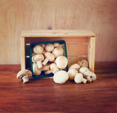 Fresh mufresh mushroom champignon in green rustic basket on wooden table Stock Image