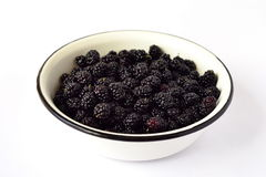 Fresh mulberry Stock Photography