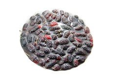 Fresh Mulberry in water Stock Photos