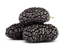 Fresh mulberry. On a white background. Clipping Path stock photos