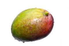 Fresh multicolored mango Stock Photo