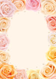Multicolored roses frame Royalty Free Stock Images