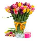 Fresh multicolored  tulips in vase Stock Photo