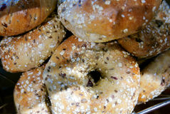 Fresh Multigrain Bagels at Bakery Royalty Free Stock Images