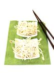 Fresh mung bean sprouts with chopsticks Royalty Free Stock Photos