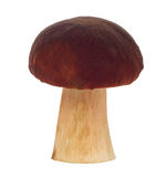 Fresh mushroom Royalty Free Stock Photo