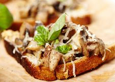 Fresh mushroom bruschettas on a wooden board Royalty Free Stock Image