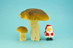 Fresh mushroom cep boletus and small retro Santa claus toy Royalty Free Stock Images