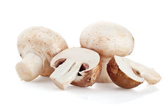 Fresh mushroom champignon  on white background Royalty Free Stock Image