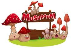 Fresh mushroom with happy face Stock Photos