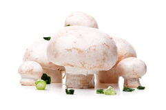 Fresh mushroom with onion Stock Photo
