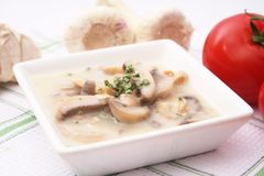 Fresh mushroom soup Stock Images