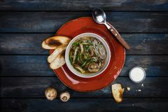 Fresh mushroom soup with green onion sour cream and bread crisps. On a ceramic plate. Colored wooden background, spoon Stock Images