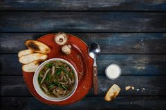 Fresh mushroom soup with green onion sour cream and bread crisps. On a ceramic plate. Colored wooden background, spoon Royalty Free Stock Photography