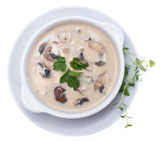 Fresh Mushroom Soup (on white) Stock Photo