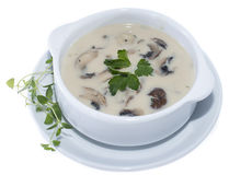 Fresh Mushroom Soup (on white) Royalty Free Stock Photo