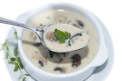 Fresh Mushroom Soup (on white) Royalty Free Stock Photos