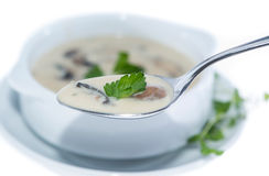 Fresh Mushroom Soup (on white) Stock Photos