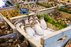 Fresh mushroom varieties in wooden boxes in French market in Paris, France Stock Photo