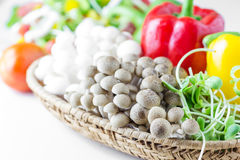 Fresh mushroom, yellow and red pepper,Sunflower sprouts Stock Photo