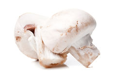 Fresh mushrooms Royalty Free Stock Images