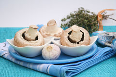Fresh mushrooms. Some fresh white mushrooms on a plate Royalty Free Stock Images