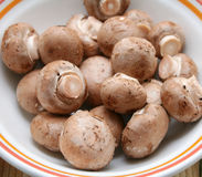 Fresh mushrooms. Some fresh brown mushrooms in a bowl Stock Image