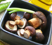 Fresh mushrooms. Some fresh mushrooms in a bowl with spring onions Royalty Free Stock Photos