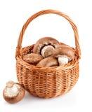 Fresh mushrooms in a basket Royalty Free Stock Photo