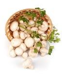 Fresh mushrooms in a basket Stock Photos