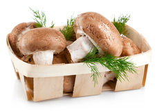 Fresh mushrooms in basket with leaves dill Stock Images