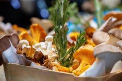 Colorfull fresh Mushrooms at Borough Market, London stock image
