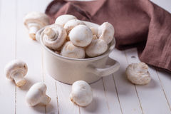 Fresh mushrooms Stock Photography