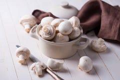Fresh mushrooms Stock Image