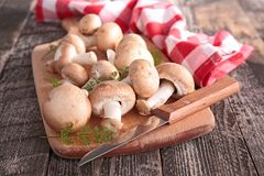 Fresh mushrooms Stock Photography