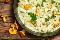 Fresh mushrooms cooked in a pan with cream Royalty Free Stock Photography