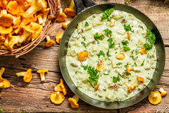 Fresh mushrooms cooked in a pan with cream royalty free stock photo