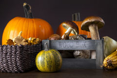 Fresh mushrooms, corn and pumpkin Stock Photo