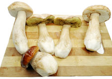 Fresh mushrooms on cutting board Stock Photography
