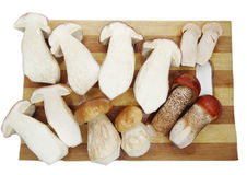 Fresh mushrooms on cutting board Stock Photos