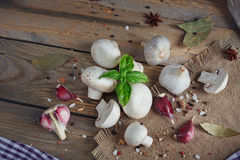 Fresh mushrooms and garlic on wooden background. Fresh mushrooms and garlic on rustic wooden background Stock Photos