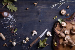 Fresh mushrooms, herbs and spices. Fall season ingredients background. Copy space, top view. Royalty Free Stock Photography
