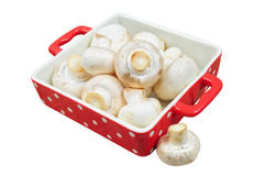 Fresh mushrooms, isolated Stock Photo