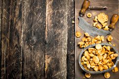 Fresh mushrooms with a knife on a cutting board. Royalty Free Stock Images