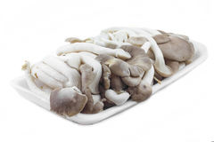 Fresh mushrooms. Ready to eat from the supermarket Stock Photo
