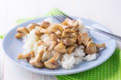 Fresh mushrooms and rice Stock Photography