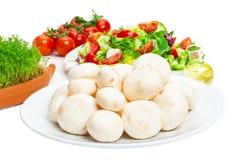 Fresh mushrooms, salad Stock Images