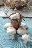 Fresh mushrooms in a small wicker basket portrait wide Royalty Free Stock Photography