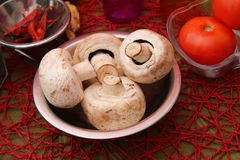 Fresh mushrooms. Some fresh mushrooms in a bowl Royalty Free Stock Images